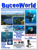 revista gratis buceo