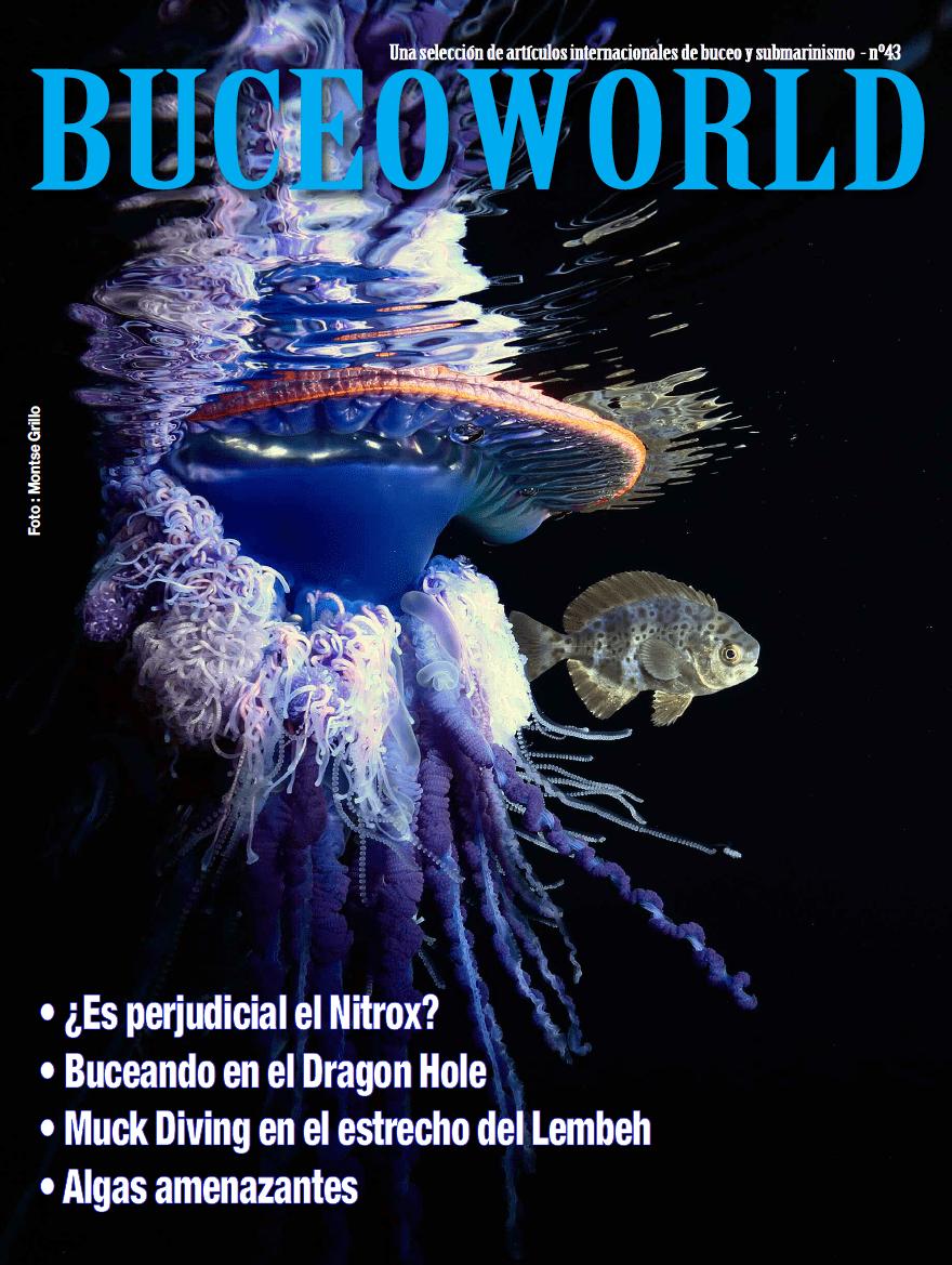 revista buceo 43